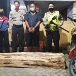 Angkut Kayu di Hutan Plandaan, Pria Lamongan Diamankan Polisi