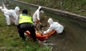 Mayat di Saluran Irigasi di Tuban Dievakuasi Dengan Protokol Kesehatan