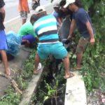 Hindari Lubang Jalan, Solikan Tabrak Mio dan Masuk Selokan di Jombang