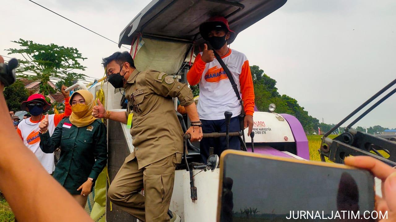 Panen raya padi Jombang, Mentan sampaikan pertanian tak pernah ingkar