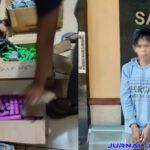 Penjual Petasan Yang Lukai Tangan Bocah MI di Jombang Ditangkap Polisi