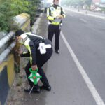 Bruk! Tabrak Tembok Jembatan, Pemotor Tewas di Jalan Jogoloyo Jombang