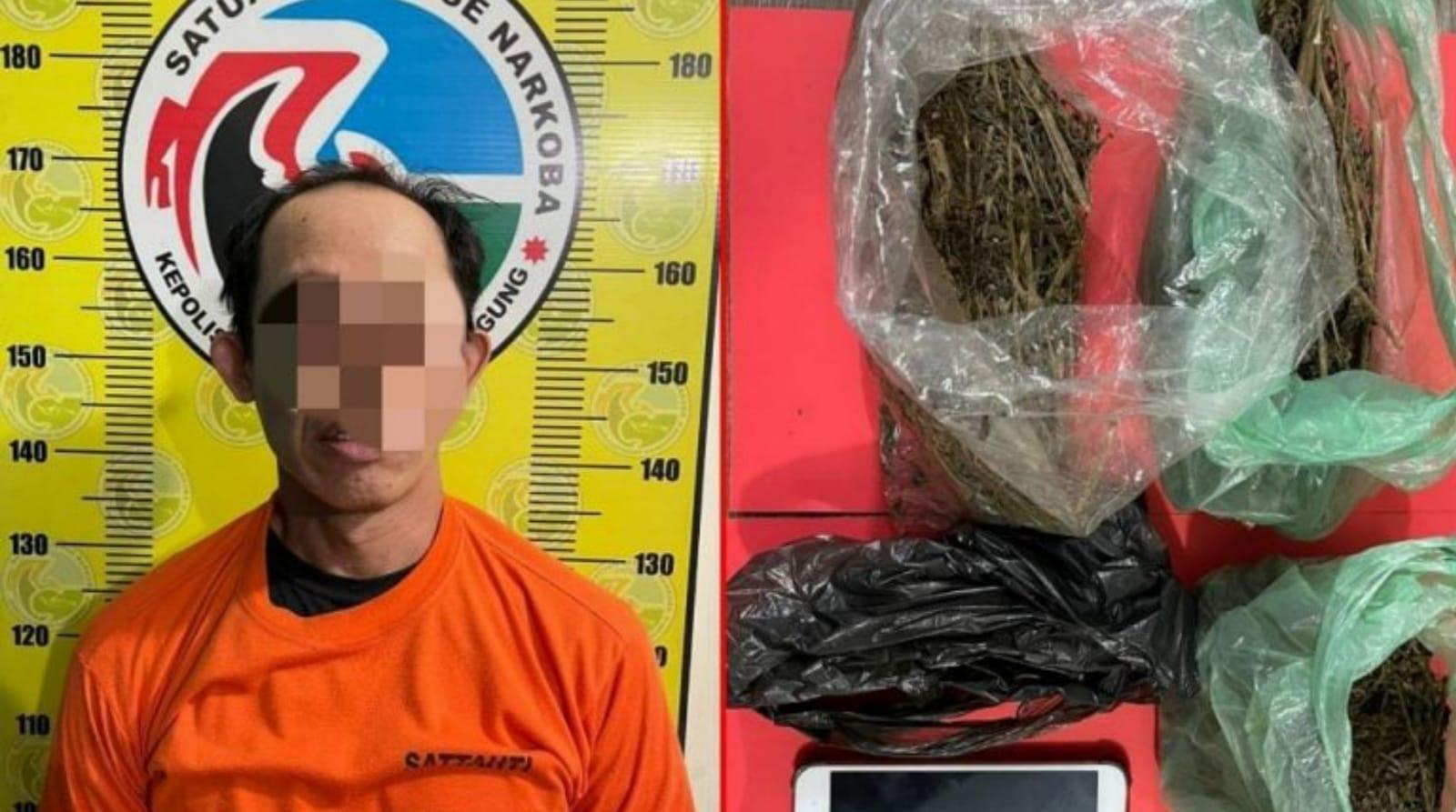 Kurir Narkotika Ganja di Kedungwaru Tulungagung Ditangkap Polisi