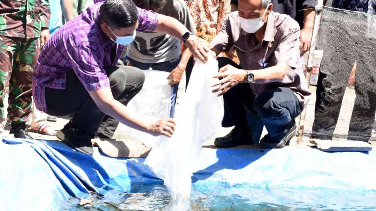 Budidaya Ikan Hias di Kota Kediri Jadi Peluang Bisnis Menjanjikan