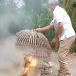Polisi Gerebek Judi Sabung Ayam di Balongmojo Jombang