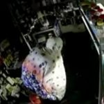 Cerdik! Pencuri Toko Aksesori Ponsel di Jombang Pakai Mukena